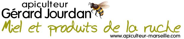 Miels rares et labellisés, vente d'essaims pour apiculture, installation de Ruches sur toits, enlèvement gratuit d'essaims à Marseille et alentours
