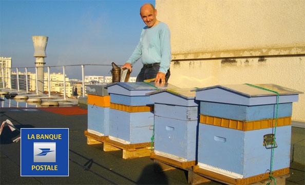 Pose de 4 rûches sur les toitures du Cente Financier de la banque Postale, à Marseille 3ème arrdt.