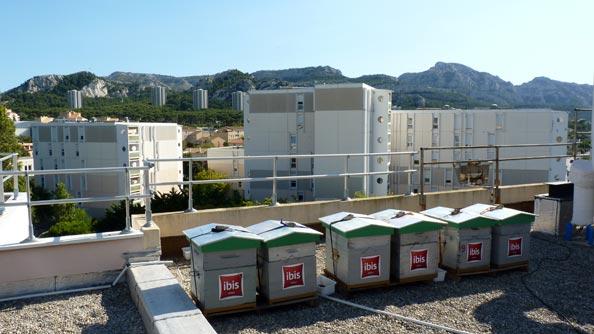 Rûches sur les toits de l'hôtel Ibis Bonneveine, route des Calanques à Marseille. Au 2e plan, le massif des Calanques, avec les monts Marseilleveyre et Beouveyre.
